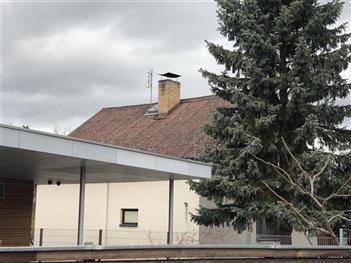 Rekonstrukce chaty - Plav